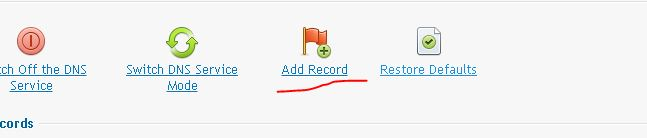 add record Plesk 12